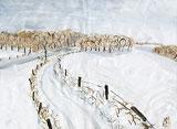 Paysage d'hiver avec des couleurs d'eau