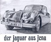 Le Jaguar de Jena (dessin crayon)